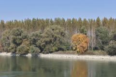 Donaulandschaft #1